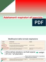 Lezione 7 Adattamenti respiratori all'esercizio