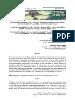 Condominio_residencial_farol_da_ilha_em_Sao_Luis_M