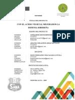 PROYECTO .INFORME-DE-ACERO VEGETAL-IE SANTA ANA-CHINCHA.docx