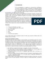 Conservaci__n_de_Levaduras