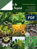 Livro-FISIOLOGIA-VEGETAL-site.pdf