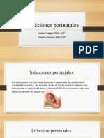 Infeccion perinatal