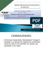 microexpoanahongos-140530001025-phpapp01