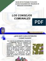 LEY DE CONSEJOS COMUNALES - COMUNAS (MODULO I)