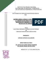 """""""ESTRÉS ANÍMICO CRÓNICO COMO INDUCTOR DE LA COMUNICACIÓN DIRECTA EN CÉLULAS NEURONALES E INMUNES .pdf"""