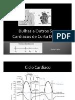 Bulhas e Outros Sons Cardíacos de Curta Duração
