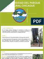 Biodiversidad_del_parque_chicaque.pptx
