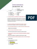 PRACTICA CALIFICADA 01.docx