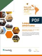 FOLLETO-LOQUE-AMERICANA