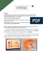 atividades6-9anoSaula7_MIRO.pdf