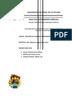 PARAMETROS GEOMORFOLOGICOS DE LA CUENCA DEL RIO HUANCANE.docx