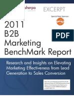2011 B2B Marketing Benchmark Report (Excerpt)