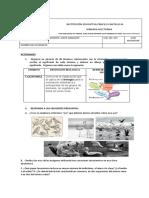 NIVELACION NATURALES CLEI 401-04.docx