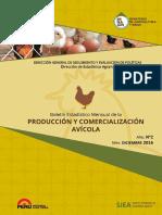 sector-avicola-diciembre2016.pdf