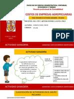 RESUMEN ACTIVIDAD GANADERA - PECUARIA