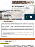 INDUSTRIA DE EMBUTIDOS-FINAL.pptx