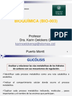 """14 GLICÃ""""LISIS Y FERMENTACIÃ""""N (MOD) 24-09-2015 KO.pdf"""