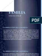 FAMILIA III diapositivas octava