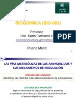 27 METABOLISMO NITROGENADO KO 12-11-2015.pdf