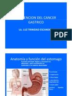 C.A. gastrico ll.pdf