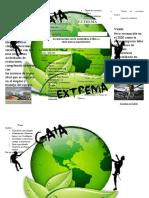 Copia de Empresa de administracion.docx