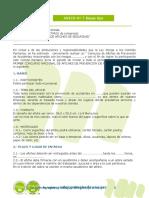 ANEXO 7 Diseño e impementacion de campaña interna Bases tipo