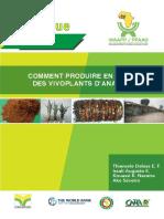 comment_produire_en_masse_des_vivoplants_dananas.pdf