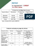 8-presentation-CAMEROUN.pdf