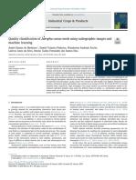 Clasificación de las semillas de JC usando radiografías y machine learning
