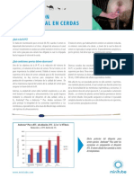 17112-3000_Leaflet-PCAI_es_181109