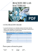 PRACTICA 6 MICROBIOLOGIA.pptx