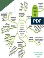 Mapa mental NOM-052-SEMARNAT-2005.pdf