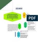 CASO HARVAD.pdf
