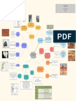 Mapa Mental 3 _Darwin_Alcaciega