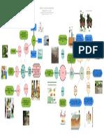 Mapa mental 4 Métodos de prevención y tratamientos de la contaminación de los suelos