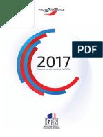 Rapport d'acctivité IGPN 2017