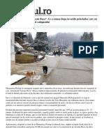 Arsenie Boca-Prezentare.pdf