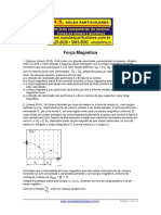 Forca-Magnetica-.pdf