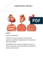 UNIDAD DIDACTICA 1 EDU fisica.docx