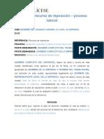 Recurso-de-reposicion.doc