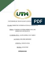 comision interamericana de derechos humanos