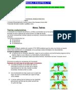 T.P 4 de BIOLOGIA
