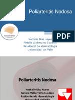 Poliarteritis Nodosa