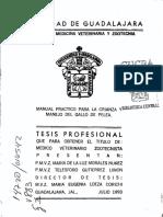 Morales_Nunez_Maria_de_la_Luz.pdf