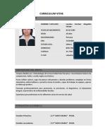 CV-Lourdes-Mogollón