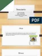 Insectario.pptx