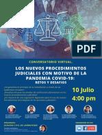 los nuevos procedimeintos judiciales con motivo de la pandemia covid-19_ retos y desafios (1).pdf