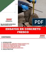 PPT Ensayos en concreto CCC.pdf
