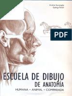 Escuela de Dibujo de Anatomia Humana y Animal Andras Szunyoghy Gyorgy Feher