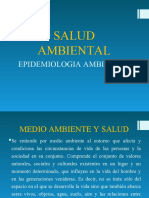 SALUD-AMBIENTAL-1.ppt